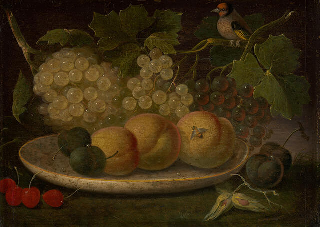 Still Life (Peaches, Grapes, Cherries, Bee & Bird)