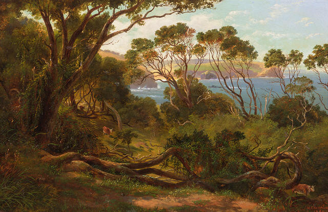 Tea-trees and Creepers, Cape Schanck, Victoria 1865