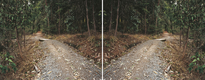 Ann Shelton Doublet (After Heavenly Creatures), Parker-Hulme Crime Scene Port Hills, Christchurch, New Zealand 2001. Diptych, C type prints. From the series Public Places.