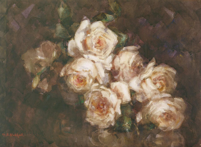 Anna Ollivier Roses
