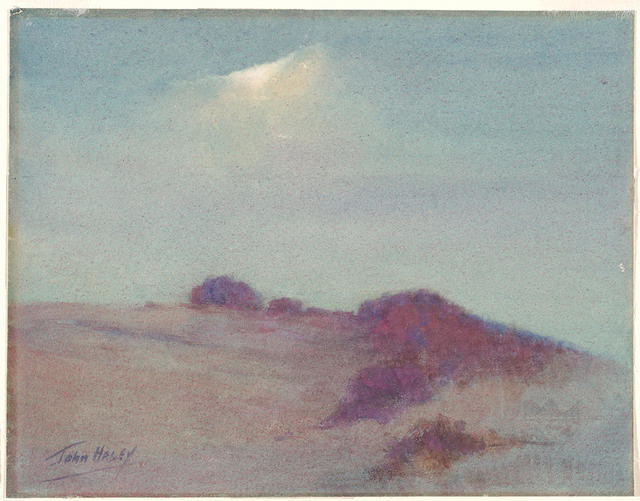 Moonlight on the dunes