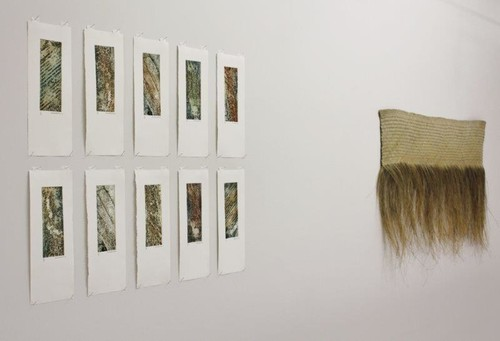 Installation image of Aotearoa at Oxford Art Gallery. Photo: Rachel McRobb