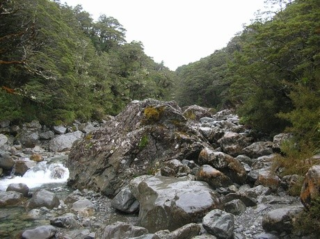 Upper reaches of the Bealey River near Arthur's Pass.