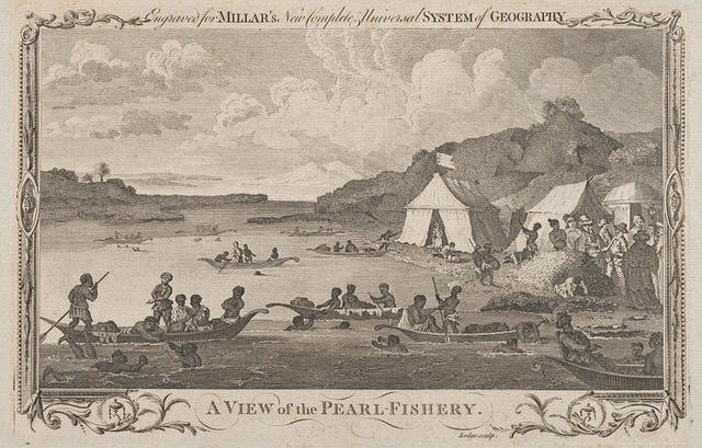 A View of the Pearl Fishery