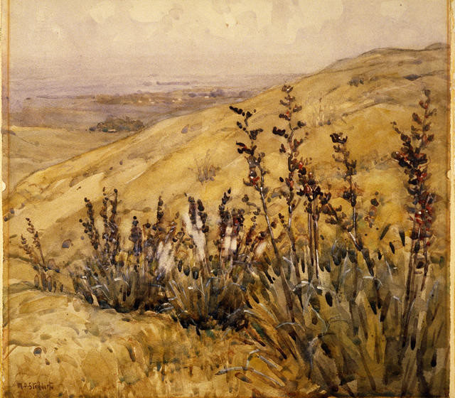 Flax Gully, Cashmere