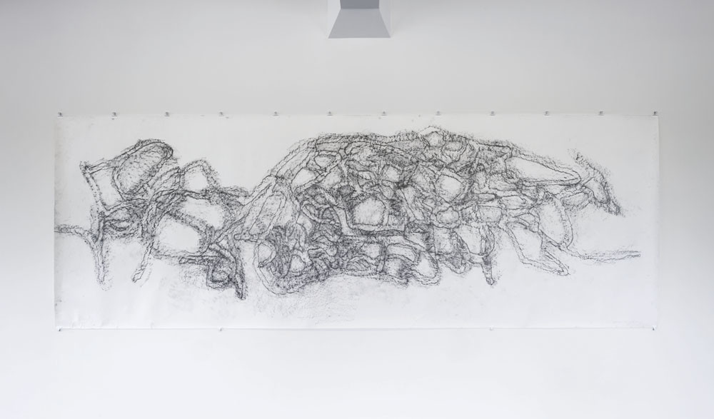 Katie Thomas Westenra Terrace 2011. Graphite rubbing on paper. Courtesy of the artist