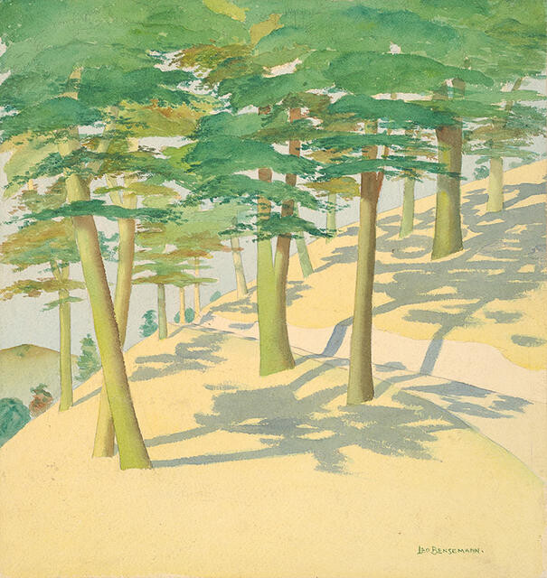 The Zigzag, Nelson, with Pines