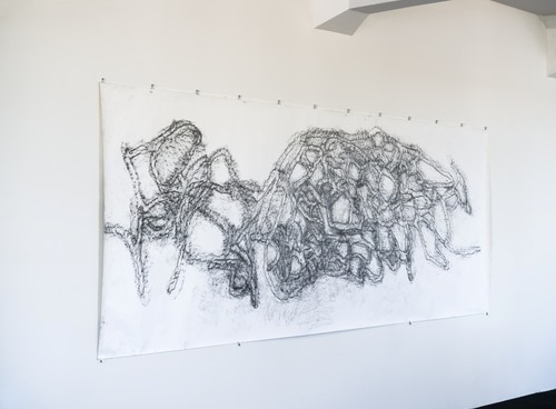 Katie Thomas Westenra Terrace 2011. Conté rubbing on paper. Courtesy of the artist