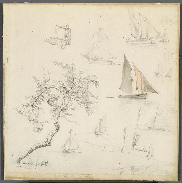 Boats and Trees