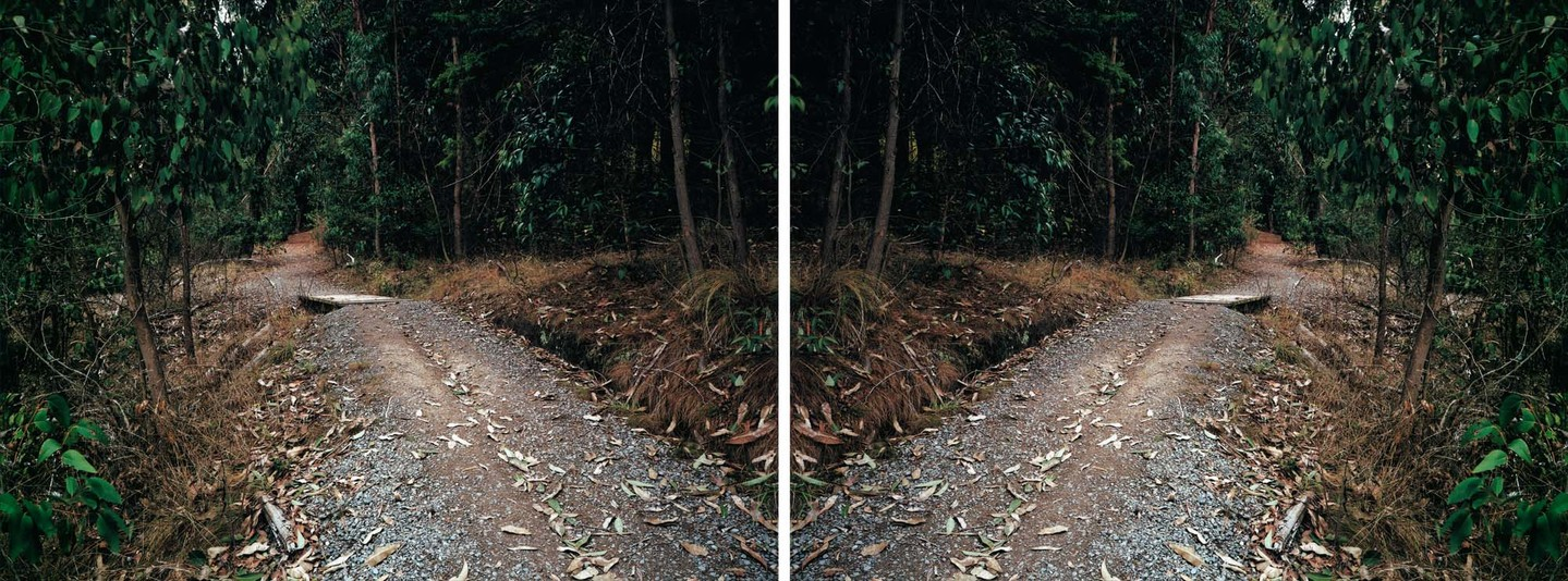 Ann Shelton Doublet (After Heavenly Creatures), Parker-Hulme Crime Scene Port Hills, Christchurch, New Zealand 2001. Diptych, C-type prints. From the series Public Places. Collection of Christchurch Art Gallery Te Puna o Waiwhetū, purchased 2004