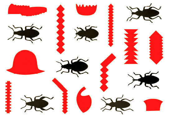 Black Insects, Red Primitives