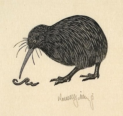 Robert Gibbings Kiwi And Worm (Untitled). Mezzotint. Collection of Christchurch Art Gallery Te Puna o Waiwhetū, gifted by Mrs Rosalie Archer. Reproduced courtesy of Reading University Library