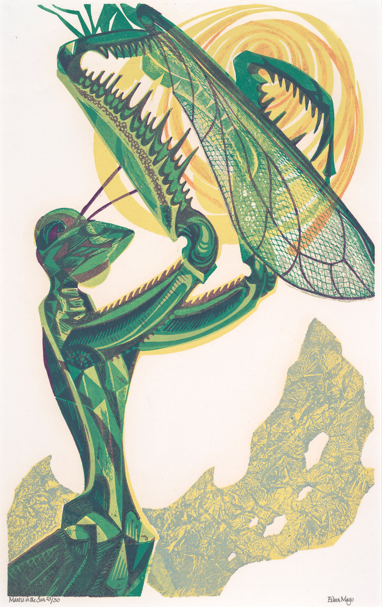 Colouring in: Mantis in the Sun