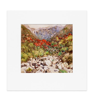 An Otira Stream (Mountain Rata) - Print