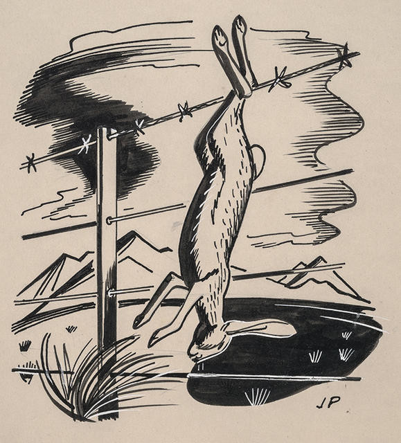 Untitled [Hare on a wire fence]
