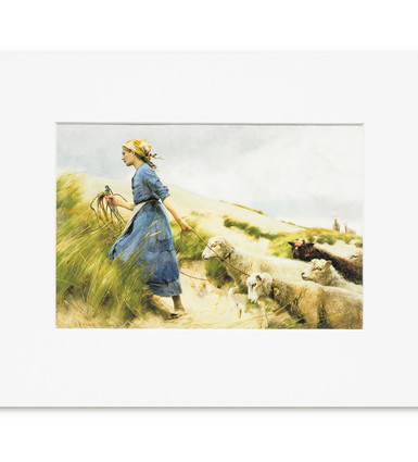 Among the Sandhills - Print