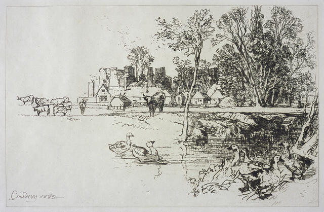 Cowdray castle, with geese