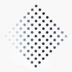 Black to White Discs by Bridget Riley